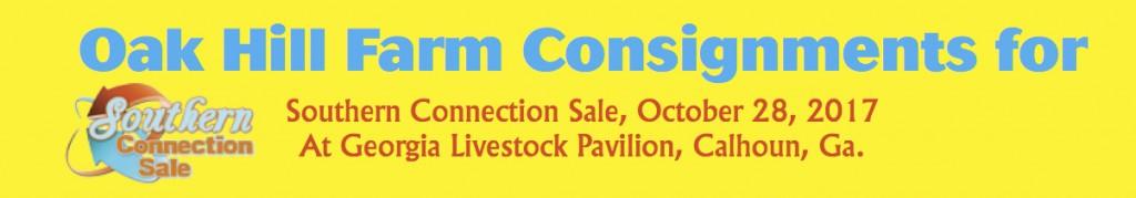 OakhillOct sale